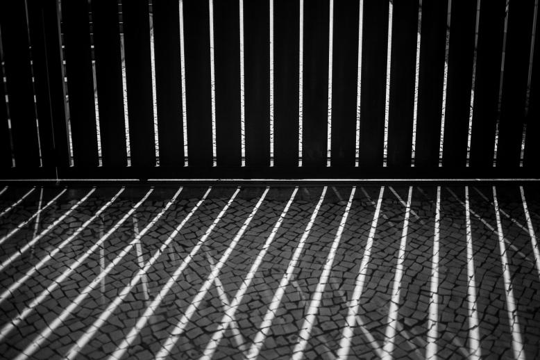 Lisbon Shadows
